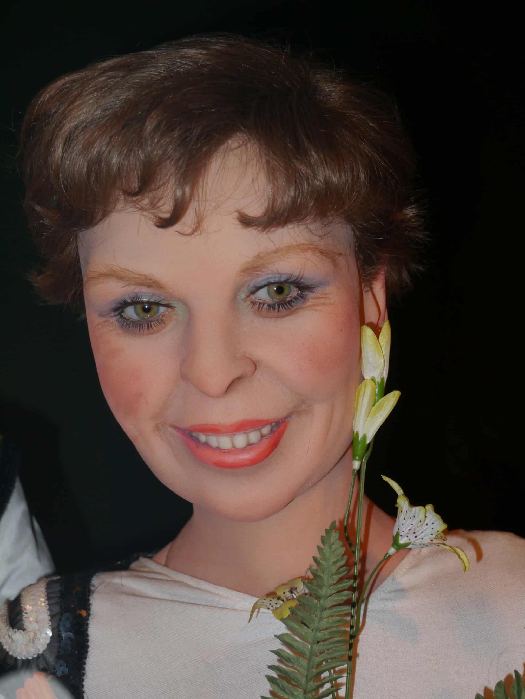 Джейн Торвил